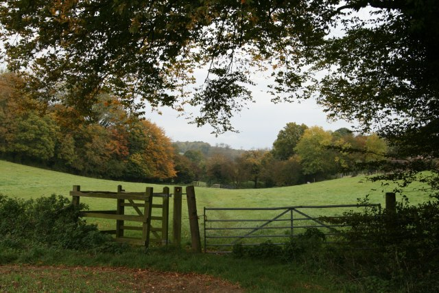 Rectory Road from Furzefield Copse