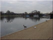 TQ2780 : The Serpentine, Hyde Park by Oxyman