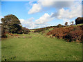 SS8578 : Northward view up Cwm y Befos by eswales