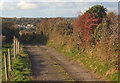 SS8678 : Hedgerow and track by Tythegston by eswales