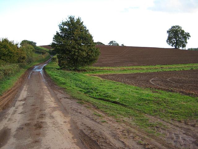 Clencher's Mill Lane, towards Bromesberrow
