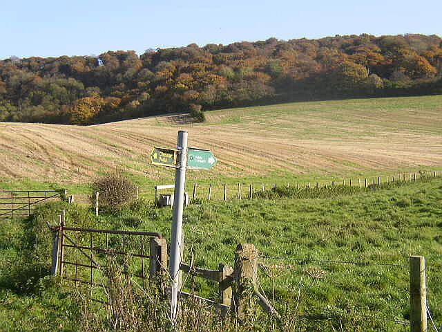 Farmland and woodland in the Chilterns