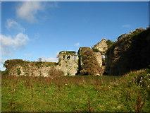 S9676 : Clonmore castle 2 by liam murphy