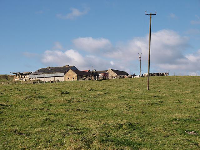 Newton Brow Farm