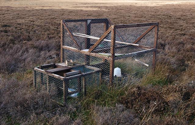 Larsen trap
