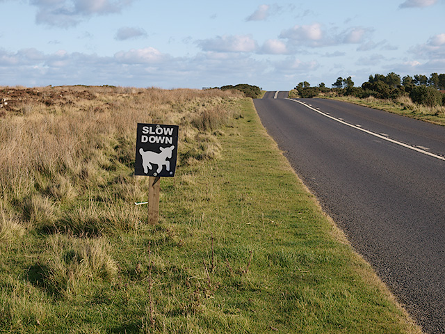 Cute sign by the B1266