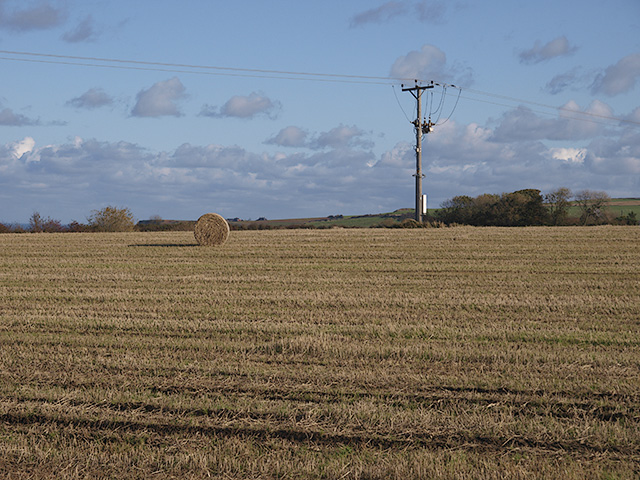 Field east of Ellerby Lane