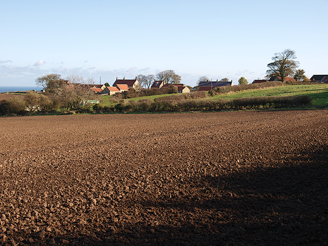 Farmland west of Ellerby