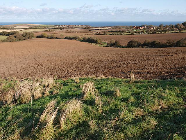 View across farmland near Ellerby