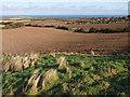 NZ7914 : View across farmland near Ellerby by Stephen McCulloch