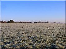 TQ1913 : Frost Covered Field near Wyckham Farm by Simon Carey