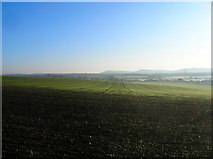 TQ1913 : Field off Wyckham Lane by Simon Carey