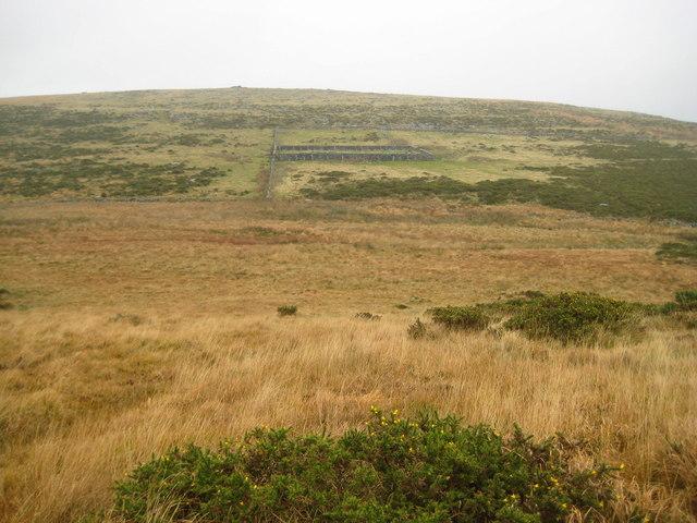 Dartmoor: The Scotch Sheepfold
