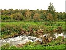 ST2425 : River Tone by Derek Harper