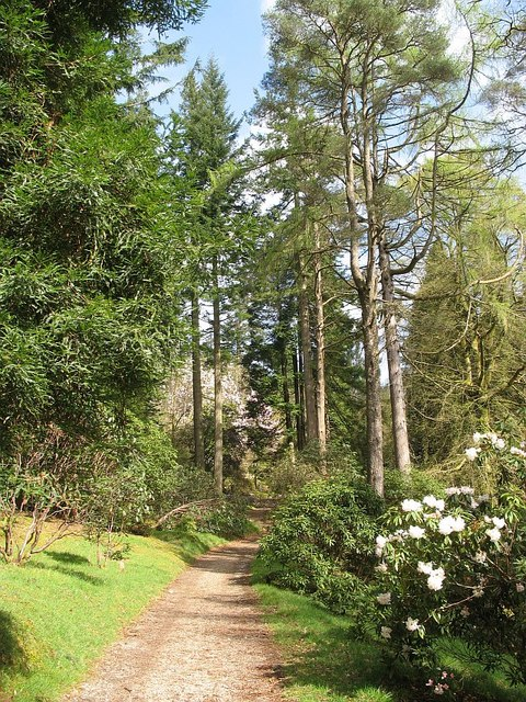 Path, Benmore