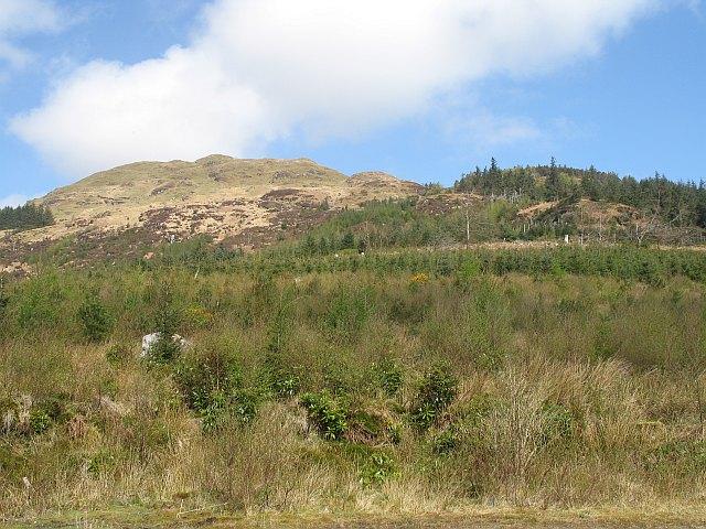 Forest, A' Chruach