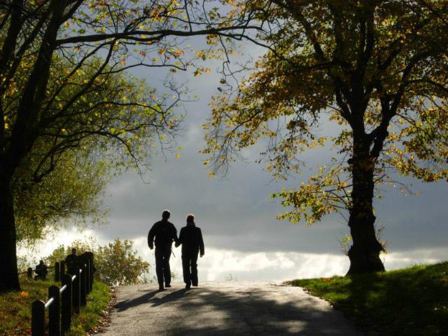 Walking over Hampstead Heath
