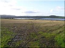 C3121 : Lough Swilly, near Ballymoney by Kenneth  Allen