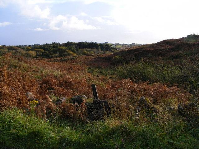 Rough grazing - Meenaduff Townland