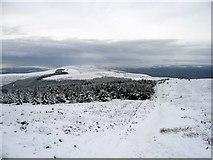 SJ1662 : View towards Foel Fenlli in the snow by John S Turner