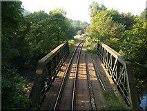 SK3155 : Railway Bridge by Tony Bacon