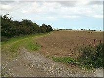 TF3686 : Farm track beside old railway by John Beal