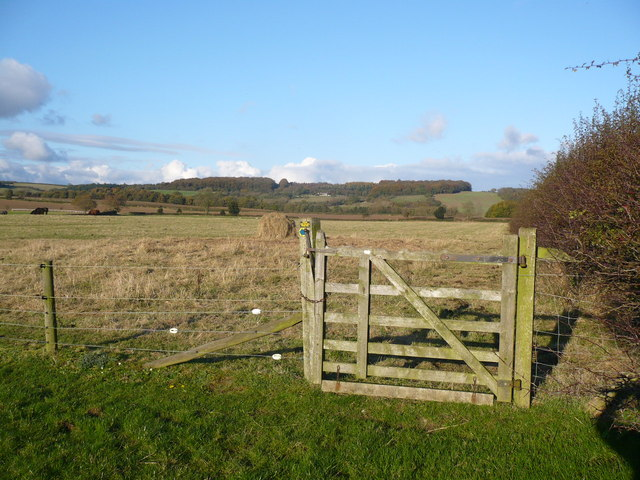Gate on footpath near Foulrice
