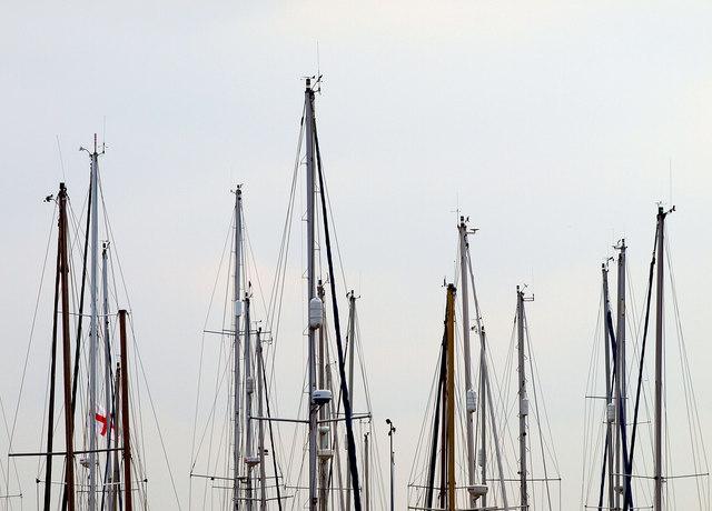 Many Masts at Hull Marina