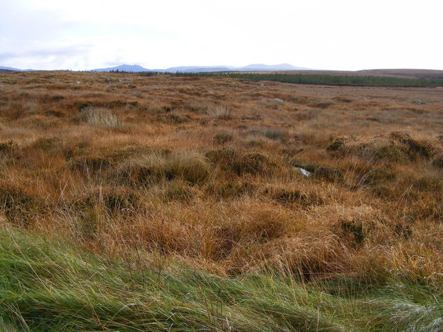 Rough grazing, Maas Townland