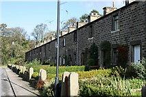 SD5345 : Long Row, Calder Vale by Bob Jenkins