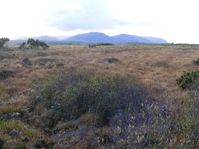 Rough grazing, Lackaweer Townland