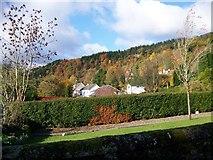 NN6208 : Callander Crags in the Autumn by Elliott Simpson