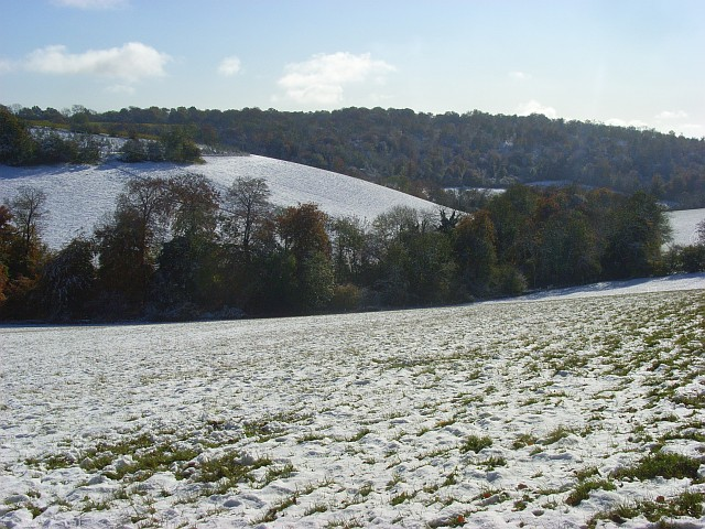 Pastures in snow, Lewknor