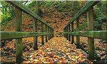 J3996 : Autumn at Glenoe (2) by Albert Bridge