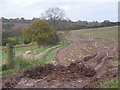 SO6687 : Just another muddy field by Row17