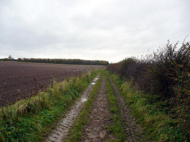 Farm track west of Rudston