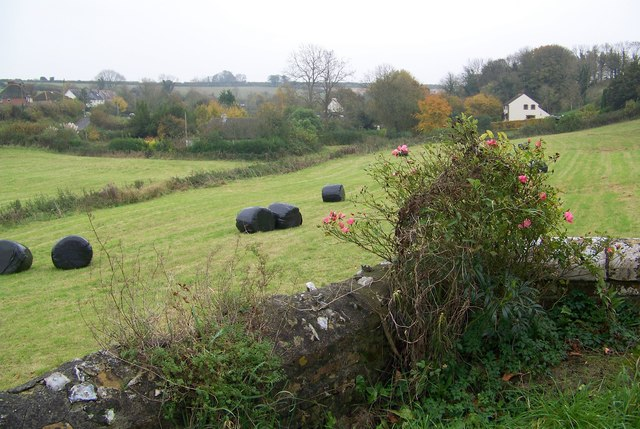 Over the churchyard wall, Cheselbourne