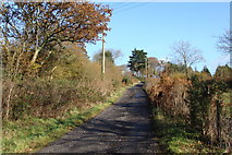 SS5894 : Track near Dunvant on a beautiful day. by Ruth Sharville