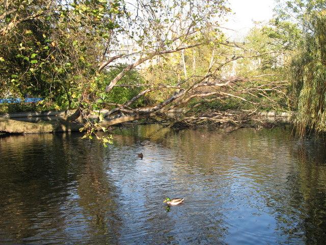 Brookmill Park Lake (2)
