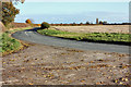 TA0044 : Anonymous lane through wheatfields by Peter Church