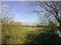 SP7536 : Sodden Meadow, Thornton by mick finn