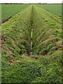 TA3323 : Farmland Drainage Channel by Andy Beecroft