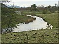 NZ0984 : River Wansbeck at Low Angerton by Oliver Dixon