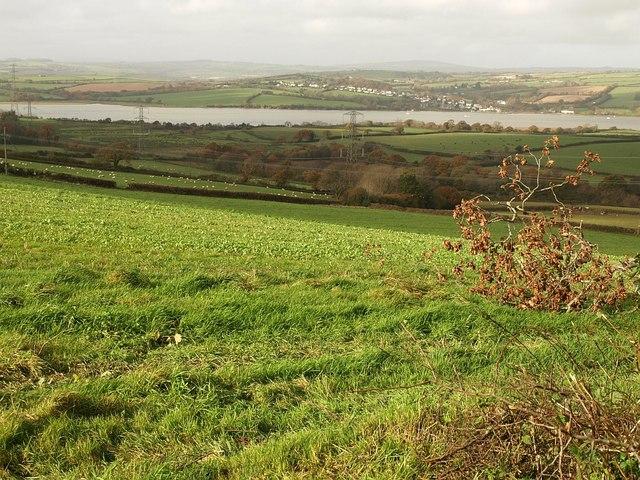 Countryside near Horsham (2)