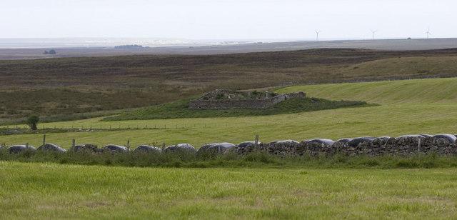 Ballachly burial ground
