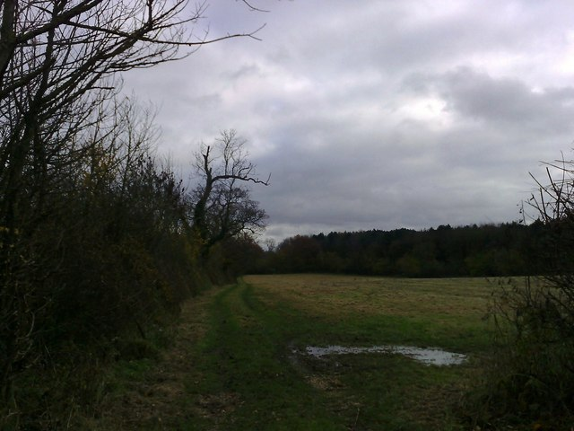 Footpath to Lenborough Woods