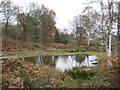 SU9386 : Littleworth Common: The western pond by Nigel Cox