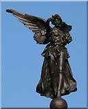 SD9951 : The Angel on top of Skipton War Memorial by Chris Tomlinson