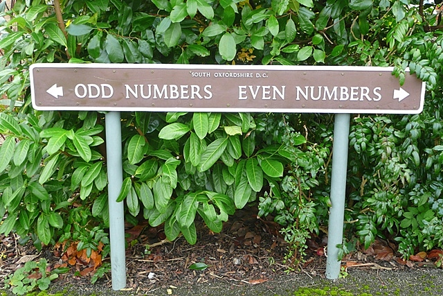 Odd numbers : Even numbers