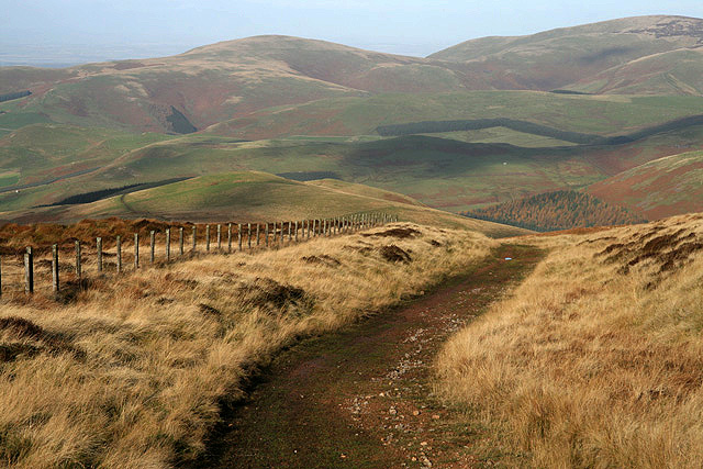 Walking in the Cheviot Hills